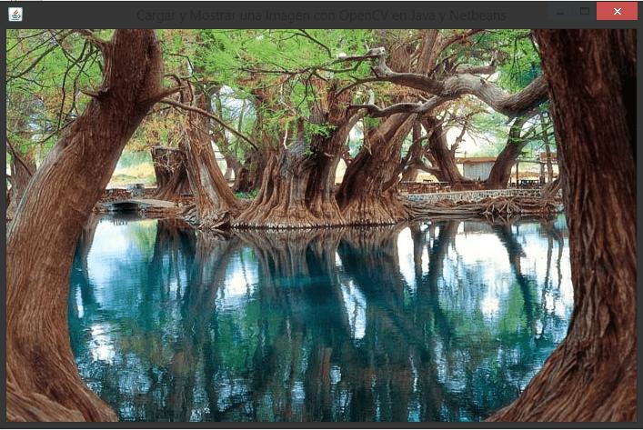 Cargar y Mostrar una Imagen con OpenCV en Java