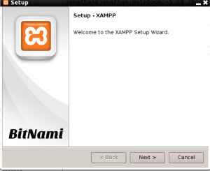 Como Instalar Xampp en Ubuntu 2