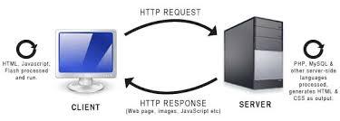 que debo aprender para ser un desarrollador web peticion